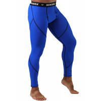 Штаны спортивные berserk dynamic blue