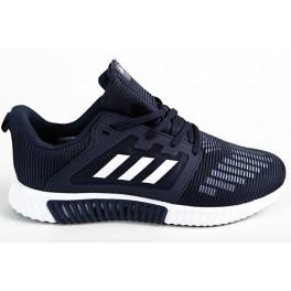 Беговые кроссовки adidas climacool vent m blue white