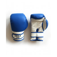 Перчатки боксерские на липучке empireboxing