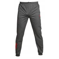 Брюки puma grey 1011