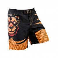 Шорты Lion Fight Shorts